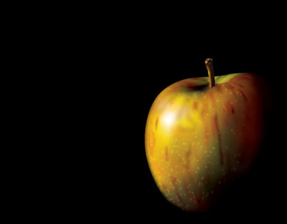 APPLES: A sample of different styles using Illustrator