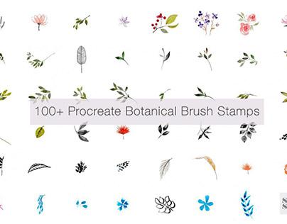 100+ Botanical Procreate Brush Stamp