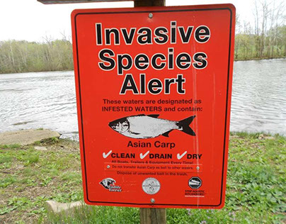 Dangers Posed by Invasive Species