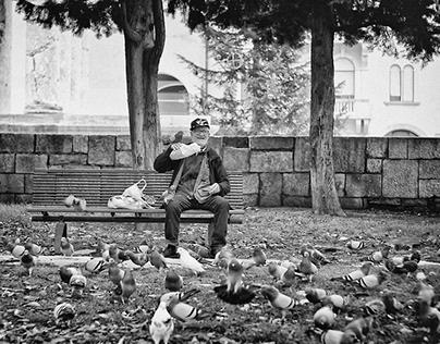 Pigeons, My Life, My Joy