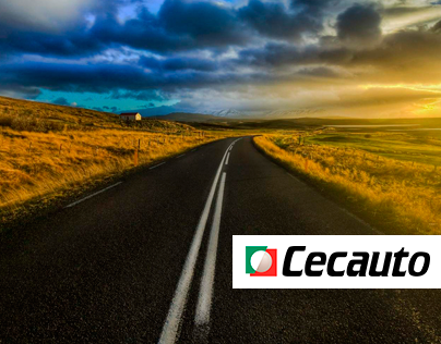 Cecauto Oficial Website
