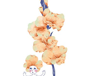 Birth months flowers