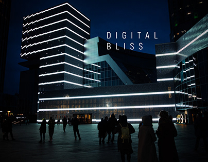 DIGITAL BLISS   Mapping