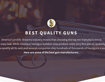 Landing Page: Best Quality Guns