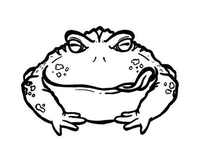 Logo Animation - Bullfrog Audio Solutions