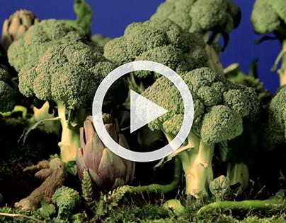 La forêt de légumes