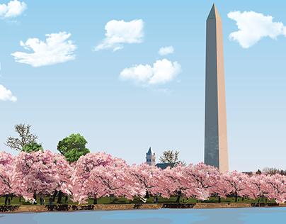 Spring in Washington D.C.