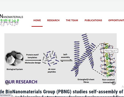 peptidebionanomaterialsgroup