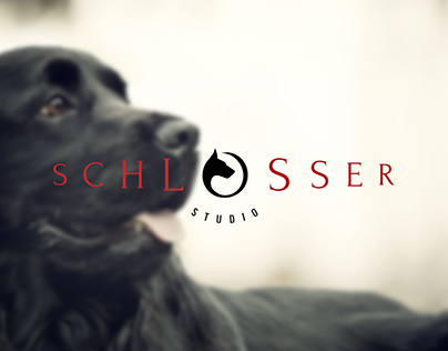 Logo for Schlosser Studio