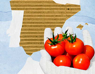 Spanish food products for export