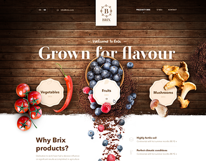 Brix brand and web design