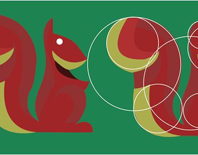 Geometrizacion  ardillas