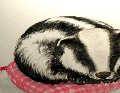Badgerina