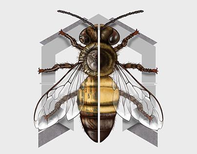 Bee Steam