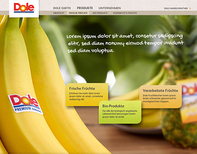 Rebranding Webdesign for Dole