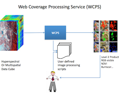 Web Coverage Processing Service
