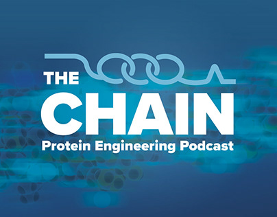 The Chain: Podcast Brand