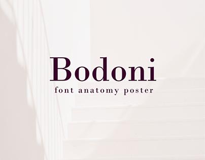 Bodoni. Font anatomy poster