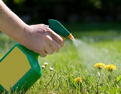 Different Weed Management Tactics & their Effectiveness