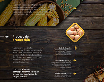 Organicum - Organic chicken infography