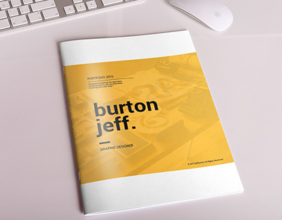 Professional Portfolio Brochure