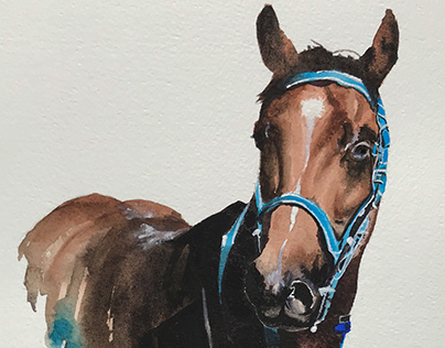 Turquoise bridle