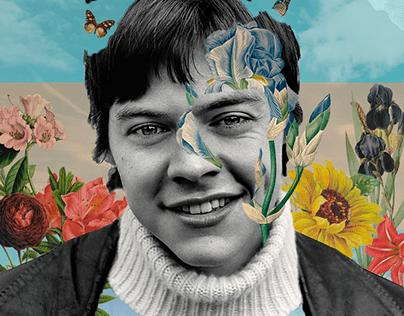 Harry Styles Surrealista