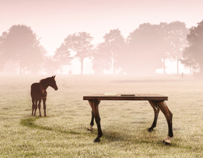 Work-horse