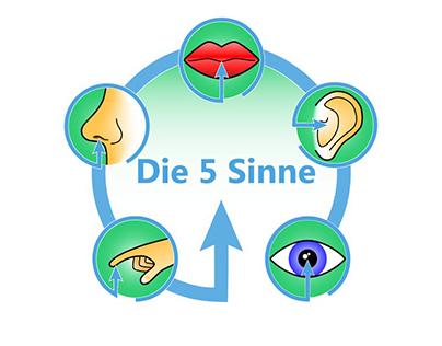 The 5 Senses Icons
