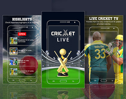 Live Cricket User Interface and Illustration