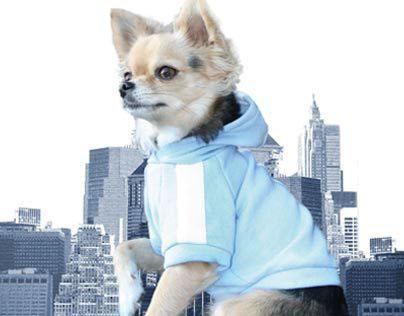 Urban Hund Matchmaking Guide [Print Catalog]