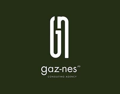 Brand identity - Gaz-Nes consulting agency