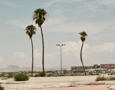 Trashy Vegas