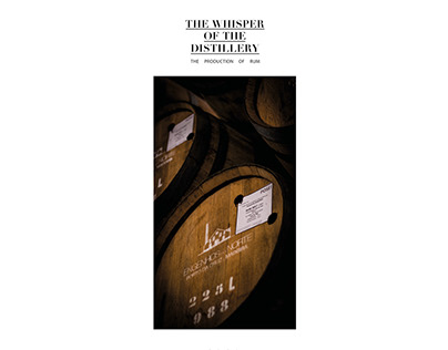 THE WHISPER OF THE DISTILLERY – THE PRODUCTION OF RUM