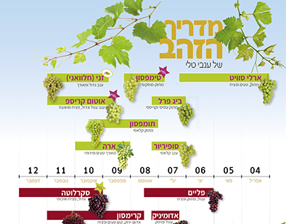 Tali grapes golden guide poster for 2018