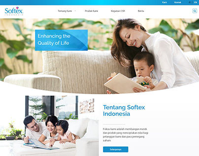 Softex Indonesia