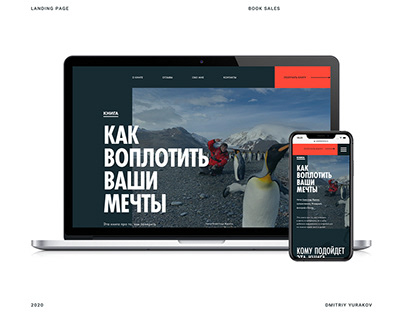 Landing page - presentation of a book
