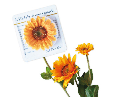 Fior fior di cibo - packaging for edible flowers