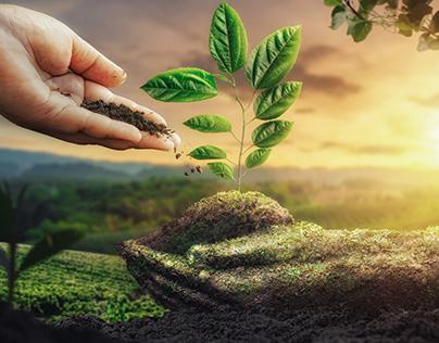 """Plants Fertilizer Poster Manipulation """"زرعتك في أمان"""""""