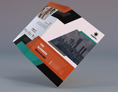 Corporate Bifold Brochure Dessign
