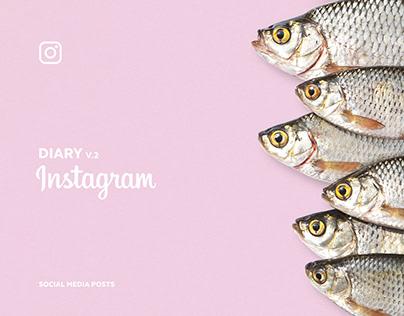 Design Diary V.2