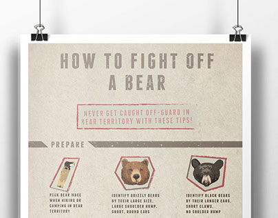 How to Fight Off a Bear Infographic