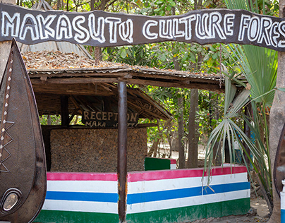 Makasutu Culture Forest - Gambia