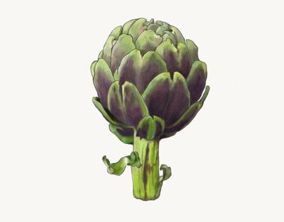 Vegetables - Artichoke