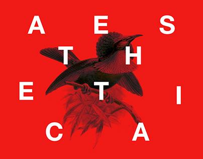 Aesthetica - Micronation Concept