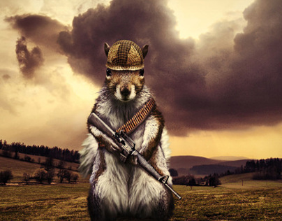 Squirrel goes to War