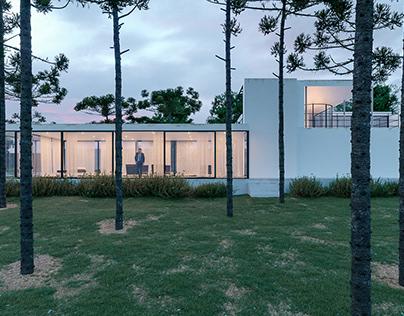 Re-construction Casa Gericke.Mies van der Rohe