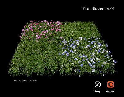 Plant flower set 06