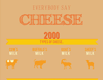 Cheese Infographic
