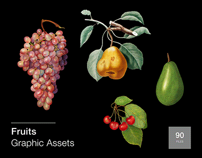 Fruits: 90 Graphic Assets